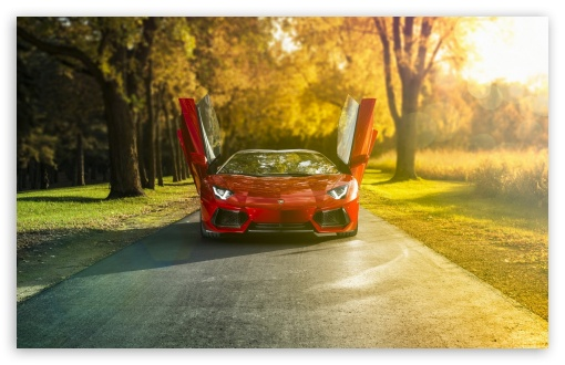 Lamborghini Aventador LP700 4 Roadster Red HD wallpaper for Wide 16:10 5:3 Widescreen WHXGA WQXGA WUXGA WXGA WGA ; HD 16:9 High Definition WQHD QWXGA 1080p 900p 720p QHD nHD ; Standard 4:3 5:4 3:2 Fullscreen UXGA XGA SVGA QSXGA SXGA DVGA HVGA HQVGA devices ( Apple PowerBook G4 iPhone 4 3G 3GS iPod Touch ) ; Tablet 1:1 ; iPad 1/2/Mini ; Mobile 4:3 5:3 3:2 16:9 5:4 - UXGA XGA SVGA WGA DVGA HVGA HQVGA devices ( Apple PowerBook G4 iPhone 4 3G 3GS iPod Touch ) WQHD QWXGA 1080p 900p 720p QHD nHD QSXGA SXGA ;