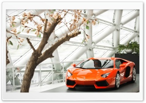 Lamborghini Aventador LP 700-4 HD Wide Wallpaper for Widescreen