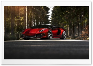 Lamborghini Aventador LP 700 4 Forest HD Wide Wallpaper for Widescreen