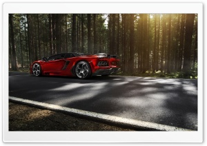 Lamborghini Aventador Mansory Forest HD Wide Wallpaper for Widescreen