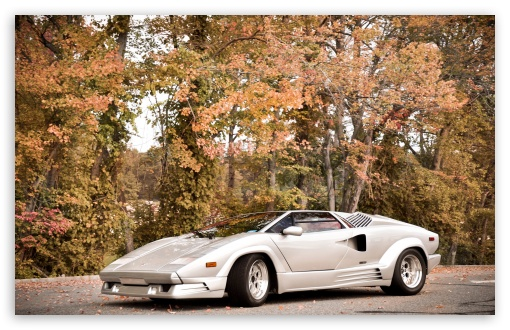 Lamborghini Countach HD wallpaper for Wide 16:10 5:3 Widescreen WHXGA WQXGA WUXGA WXGA WGA ; HD 16:9 High Definition WQHD QWXGA 1080p 900p 720p QHD nHD ; UHD 16:9 WQHD QWXGA 1080p 900p 720p QHD nHD ; Standard 4:3 5:4 3:2 Fullscreen UXGA XGA SVGA QSXGA SXGA DVGA HVGA HQVGA devices ( Apple PowerBook G4 iPhone 4 3G 3GS iPod Touch ) ; iPad 1/2/Mini ; Mobile 4:3 5:3 3:2 16:9 5:4 - UXGA XGA SVGA WGA DVGA HVGA HQVGA devices ( Apple PowerBook G4 iPhone 4 3G 3GS iPod Touch ) WQHD QWXGA 1080p 900p 720p QHD nHD QSXGA SXGA ; Dual 16:10 5:3 16:9 4:3 5:4 WHXGA WQXGA WUXGA WXGA WGA WQHD QWXGA 1080p 900p 720p QHD nHD UXGA XGA SVGA QSXGA SXGA ;