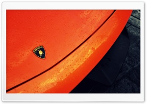 Lamborghini Logo Ultra HD Wallpaper for 4K UHD Widescreen desktop, tablet & smartphone