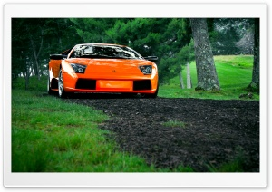 Lamborghini Murcielago Orange HD Wide Wallpaper for Widescreen