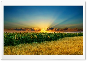Landscape HD Wide Wallpaper for Widescreen