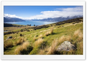 Landscape In New Zealand HD Wide Wallpaper for Widescreen