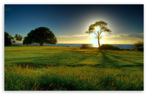 Landscape Nature HD wallpaper for Standard 4:3 5:4 Fullscreen UXGA XGA SVGA QSXGA SXGA ; Wide 16:10 5:3 Widescreen WHXGA WQXGA WUXGA WXGA WGA ; HD 16:9 High Definition WQHD QWXGA 1080p 900p 720p QHD nHD ; Other 3:2 DVGA HVGA HQVGA devices ( Apple PowerBook G4 iPhone 4 3G 3GS iPod Touch ) ; Mobile VGA WVGA iPhone iPad PSP Phone - VGA QVGA Smartphone ( PocketPC GPS iPod Zune BlackBerry HTC Samsung LG Nokia Eten Asus ) WVGA WQVGA Smartphone ( HTC Samsung Sony Ericsson LG Vertu MIO ) HVGA Smartphone ( Apple iPhone iPod BlackBerry HTC Samsung Nokia ) Sony PSP Zune HD Zen ; Tablet 2 ;
