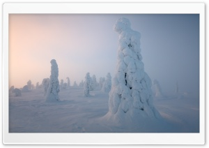 Lapland Winter HD Wide Wallpaper for 4K UHD Widescreen desktop & smartphone