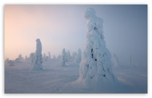 Download Lapland Winter HD Wallpaper