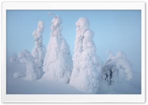 Lapland Winter Snow Ultra HD Wallpaper for 4K UHD Widescreen desktop, tablet & smartphone