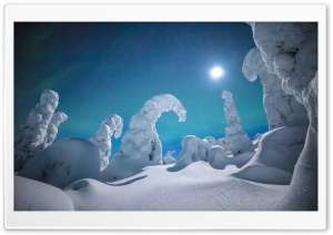 Lapland Winter Wonderland Night Ultra HD Wallpaper for 4K UHD Widescreen desktop, tablet & smartphone