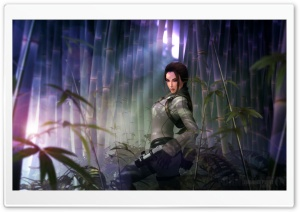 Lara Croft FanArt HD Wide Wallpaper for Widescreen