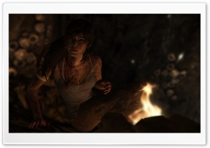 Lara Croft Survivor HD Wide Wallpaper for Widescreen