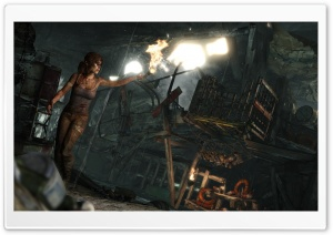 Lara Croft Survivor (2013) HD Wide Wallpaper for Widescreen