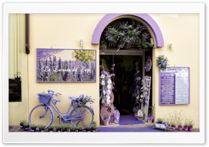 Lavender Shop HD Wide Wallpaper for Widescreen