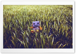 Lawn Buddy HD Wide Wallpaper for Widescreen