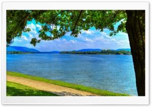 Lazy Days Ultra HD Wallpaper for 4K UHD Widescreen desktop, tablet & smartphone
