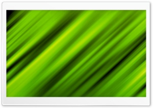 Leafy Green HD Wide Wallpaper for Widescreen