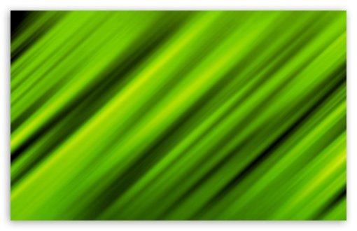 Leafy Green ❤ 4K UHD Wallpaper for Wide 16:10 5:3 Widescreen WHXGA WQXGA WUXGA WXGA WGA ; 4K UHD 16:9 Ultra High Definition 2160p 1440p 1080p 900p 720p ; UHD 16:9 2160p 1440p 1080p 900p 720p ; Standard 4:3 5:4 3:2 Fullscreen UXGA XGA SVGA QSXGA SXGA DVGA HVGA HQVGA ( Apple PowerBook G4 iPhone 4 3G 3GS iPod Touch ) ; iPad 1/2/Mini ; Mobile 4:3 5:3 3:2 16:9 5:4 - UXGA XGA SVGA WGA DVGA HVGA HQVGA ( Apple PowerBook G4 iPhone 4 3G 3GS iPod Touch ) 2160p 1440p 1080p 900p 720p QSXGA SXGA ;