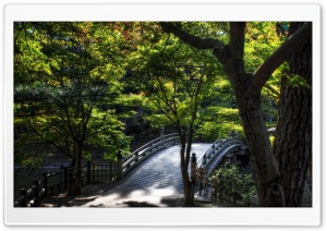 Leaves Over Taikobashi Bridge HD Wide Wallpaper for Widescreen