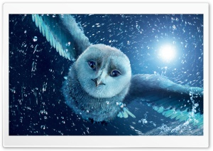 Legend Of The Guardians The Owls Of Ga Hoole HD Wide Wallpaper for 4K UHD Widescreen desktop & smartphone