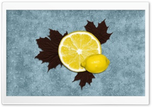Lemon HD Wide Wallpaper for Widescreen