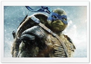 Leo - in TMNT HD Wide Wallpaper for 4K UHD Widescreen desktop & smartphone