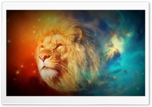 Leon Fugaz-Lion HD Wide Wallpaper for Widescreen
