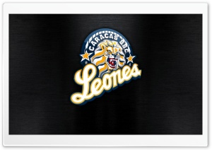 Leones del Caracas HD Wide Wallpaper for Widescreen
