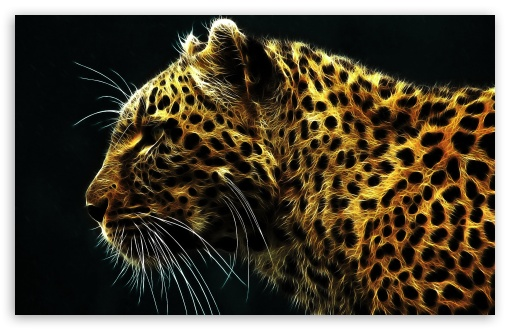 Leopard HD wallpaper for Standard 4:3 5:4 Fullscreen UXGA XGA SVGA QSXGA SXGA ; Wide 16:10 5:3 Widescreen WHXGA WQXGA WUXGA WXGA WGA ; HD 16:9 High Definition WQHD QWXGA 1080p 900p 720p QHD nHD ; Other 3:2 DVGA HVGA HQVGA devices ( Apple PowerBook G4 iPhone 4 3G 3GS iPod Touch ) ; Mobile VGA WVGA iPhone iPad PSP Phone - VGA QVGA Smartphone ( PocketPC GPS iPod Zune BlackBerry HTC Samsung LG Nokia Eten Asus ) WVGA WQVGA Smartphone ( HTC Samsung Sony Ericsson LG Vertu MIO ) HVGA Smartphone ( Apple iPhone iPod BlackBerry HTC Samsung Nokia ) Sony PSP Zune HD Zen ; Tablet 2 ;