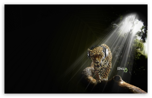 Leopard Listening Music Audio Jungle HD wallpaper for Wide 16:10 5:3 Widescreen WHXGA WQXGA WUXGA WXGA WGA ; HD 16:9 High Definition WQHD QWXGA 1080p 900p 720p QHD nHD ; Standard 4:3 5:4 3:2 Fullscreen UXGA XGA SVGA QSXGA SXGA DVGA HVGA HQVGA devices ( Apple PowerBook G4 iPhone 4 3G 3GS iPod Touch ) ; Tablet 1:1 ; iPad 1/2/Mini ; Mobile 4:3 5:3 3:2 16:9 5:4 - UXGA XGA SVGA WGA DVGA HVGA HQVGA devices ( Apple PowerBook G4 iPhone 4 3G 3GS iPod Touch ) WQHD QWXGA 1080p 900p 720p QHD nHD QSXGA SXGA ;