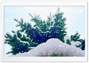 Let it Snow HD Wide Wallpaper for Widescreen