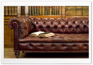 Library Old Leather Sofa HD Wide Wallpaper for Widescreen