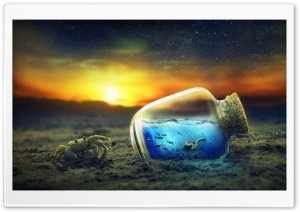 Life in a Bottle HD Wide Wallpaper for 4K UHD Widescreen desktop & smartphone