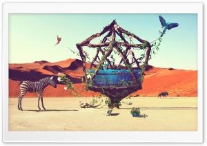 Life in Desert Ultra HD Wallpaper for 4K UHD Widescreen desktop, tablet & smartphone