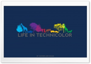 Life In Technicolor HD Wide Wallpaper for Widescreen