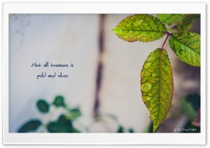 Life Quote HD Wide Wallpaper for Widescreen