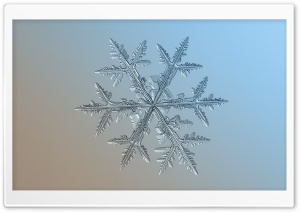 Light Blue Snowflake Background HD Wide Wallpaper for Widescreen