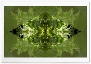 Light from Inside and Out Art HD Wide Wallpaper for 4K UHD Widescreen desktop & smartphone