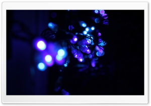 Lights Ultra HD Wallpaper for 4K UHD Widescreen desktop, tablet & smartphone