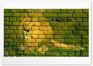 Lion Ultra HD Wallpaper for 4K UHD Widescreen desktop, tablet & smartphone