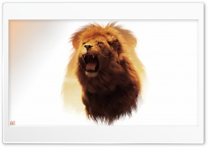 Lion Wallpaper by Yakub Nihat HD Wide Wallpaper for 4K UHD Widescreen desktop & smartphone