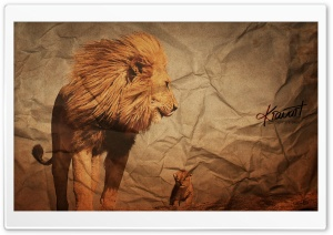 Lions HD Wide Wallpaper for Widescreen
