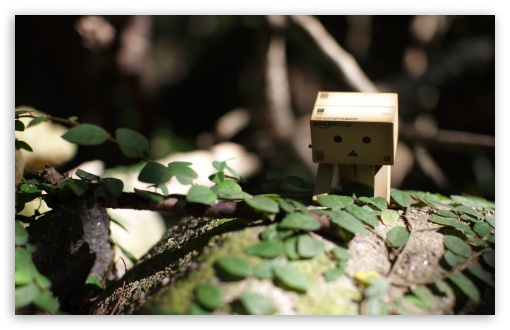 Little Danbo ❤ 4K UHD Wallpaper for Wide 16:10 5:3 Widescreen WHXGA WQXGA WUXGA WXGA WGA ; 4K UHD 16:9 Ultra High Definition 2160p 1440p 1080p 900p 720p ; UHD 16:9 2160p 1440p 1080p 900p 720p ; Standard 4:3 5:4 3:2 Fullscreen UXGA XGA SVGA QSXGA SXGA DVGA HVGA HQVGA ( Apple PowerBook G4 iPhone 4 3G 3GS iPod Touch ) ; Tablet 1:1 ; iPad 1/2/Mini ; Mobile 4:3 5:3 3:2 16:9 5:4 - UXGA XGA SVGA WGA DVGA HVGA HQVGA ( Apple PowerBook G4 iPhone 4 3G 3GS iPod Touch ) 2160p 1440p 1080p 900p 720p QSXGA SXGA ; Dual 16:10 5:3 16:9 4:3 5:4 WHXGA WQXGA WUXGA WXGA WGA 2160p 1440p 1080p 900p 720p UXGA XGA SVGA QSXGA SXGA ;