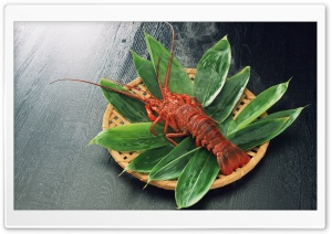 Lobster Dish HD Wide Wallpaper for Widescreen