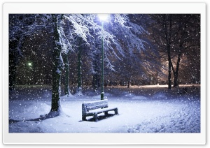 Lone Bench Covered In Snow HD Wide Wallpaper for 4K UHD Widescreen desktop & smartphone