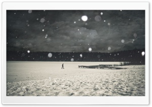 Lonely Winter HD Wide Wallpaper for Widescreen