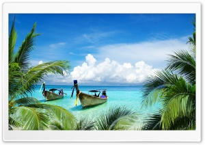 Long Tail Boats, Tropical Beach, Palm Trees Leaves HD Wide Wallpaper for Widescreen