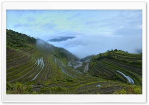 Longsheng Rice Terrace HD Wide Wallpaper for Widescreen