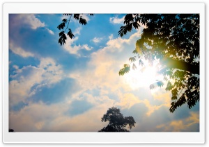 Look at the Sky HD Wide Wallpaper for Widescreen