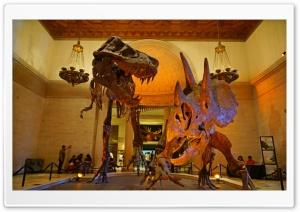 Los Angeles, Natural History Museum Ultra HD Wallpaper for 4K UHD Widescreen desktop, tablet & smartphone